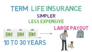 Life Insurance 101 (Life Insurance 1/2; Relationships & Finance 5/8)