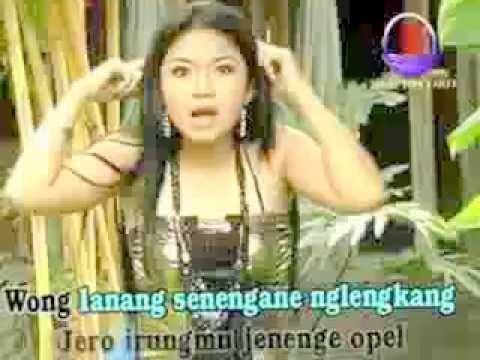 www stafaband co   Watu Cilik   Lagu dangdut