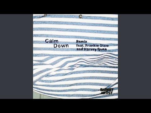 Calm Down [Remix]