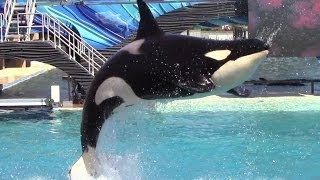 One Ocean at SeaWorld San Diego 3-21-14 Part 1