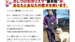 詳細はこちらからご覧になれます http://keienkinshi.sakura.ne.jp/t/SH...