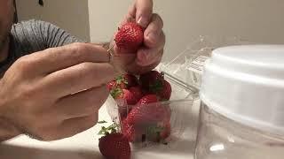 Guy found Needle in Strawberry