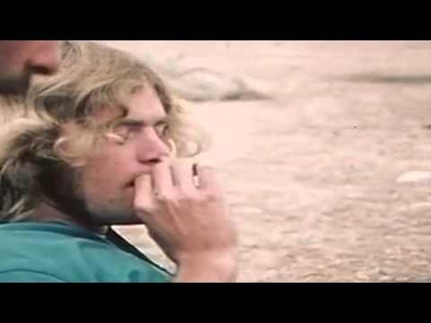 UfO - A Freak In trip: Live from Woodstock