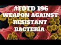 #FOTD196 New Weapon to Fight Antibiotic Resistant Bacteria SNAPPs