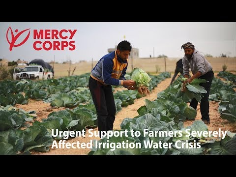 Mercy Corps Gaza - Food Security Program 2017-2018