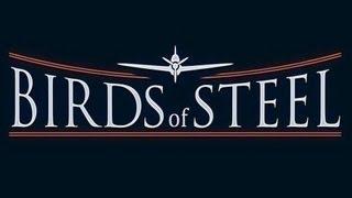 Birds Of Steel En español PS3