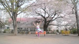 震災から一月。今年の桜も美しかったですね。 One month after the eart...