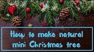 HOW TO MAKE NATURAL MINI CHRISTMAS TREE / 5 Miniature Crafts