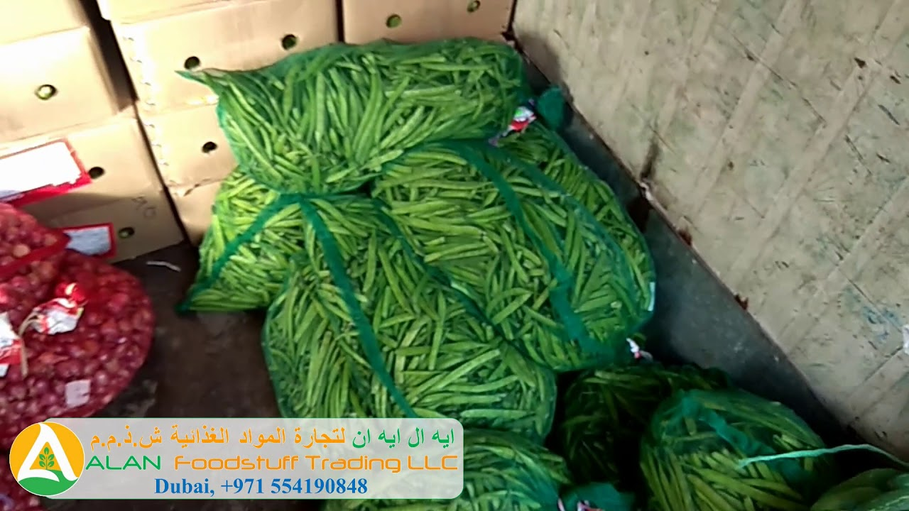Fresh Vegetables from Tamil Nadu, India - 03-11-2018