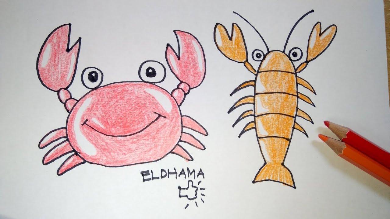 Cara Mudah Menggambar Kepiting Dan Udang ELDHAMA