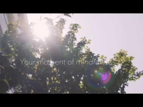 Moment of Mindfulness - University of Warwick