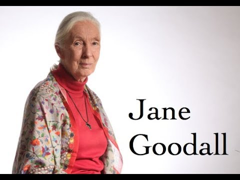 The legendary Jane Goodall talks chimps, roots and shoots