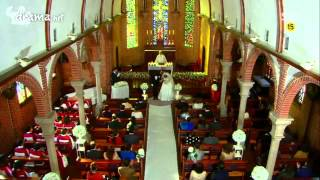 Video Ugle Alert Wedding download MP3, 3GP, MP4, WEBM, AVI, FLV Februari 2018