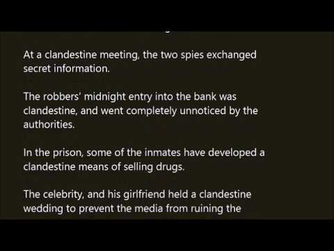 how to use clandestine in a sentence