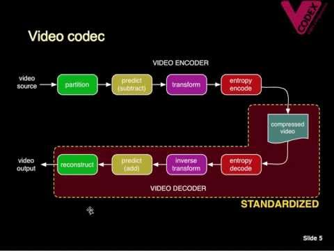 Vcodex: Introduction to Video Coding