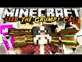 Minecraft Modded Mini-Game : FEED THE GRUMPY CAT!