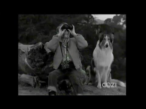 "Lassie - Episode #323 - ""Eagle's Lair"" - Season 9, Ep.32 - 05/19/1963"