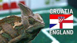 Leon Likes: England vs. Croatia