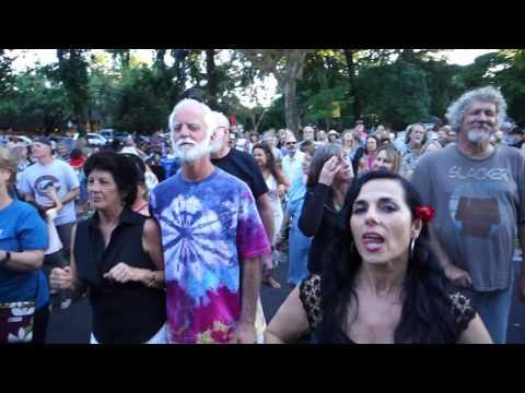 In a Daydream... FREDDY JONES BAND... Healdsburg Plaza 2017