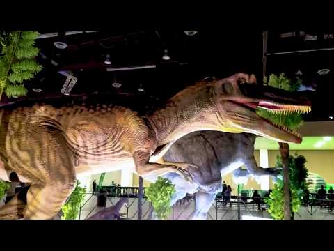 Petting Baby Dinosaurs ! Dino Adventure Jurassic Quest Vlog Video