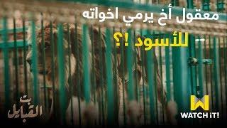 مسلسل بت القبايل - شمس قرر يرمي اخواته للأسود 😳😠