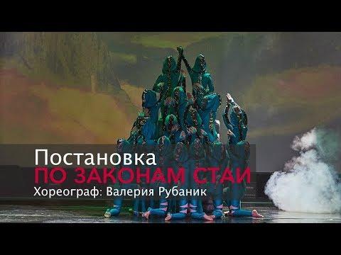 """Отчетный концерт """"NAM 5"""" Постановка """"По законам стаи"""". Хореограф Валерия Рубаник"""