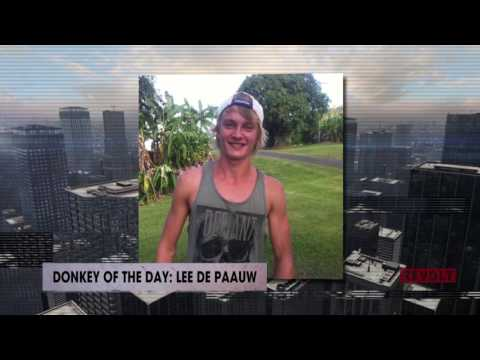 Lee De Paauw   Donkey of the Day