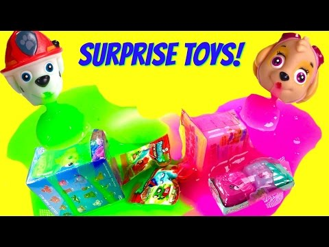 Wacky Paw Patrol Slime Wednesday! Marshall & Skye make SLIME Blind Bags Toy Surprises!
