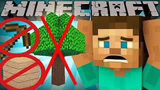 One of ExplodingTNT's most viewed videos: If Wood was Rare - Minecraft