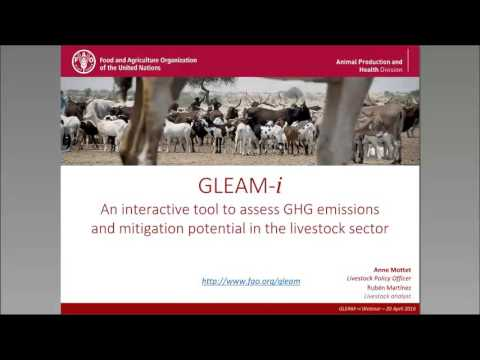 GLEAM-i, an interactive tool to assess GHG emissions in the livestock sector – Anne Mottet