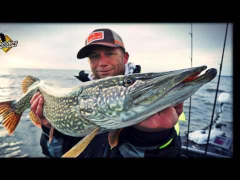 Vänern, November 2015 @Sportfishing Dalsland