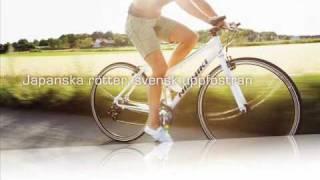 Nishiki Pro SLD cykel hybrid  www.cykelstaden.se