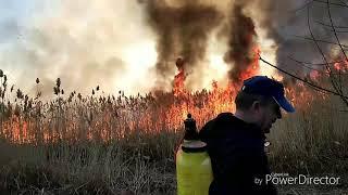 Горел камыш, деревья тоже! Как мы тушили пожар!!!