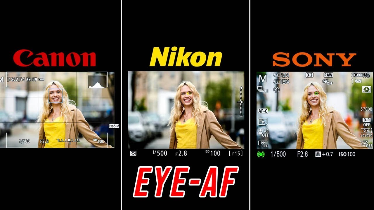 Nikon Z6/Z7 Eye AF is Out: Here's How it Compares to Sony