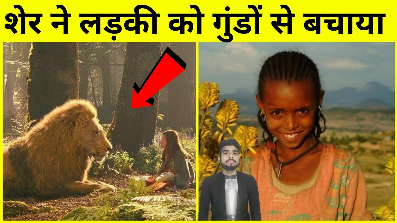 #shorts लड़की को उठा कर किडनैप कर लिया लेकिन उसके बाद शेर ने सबक सिखाया   Lion Saves a 12 Year girl