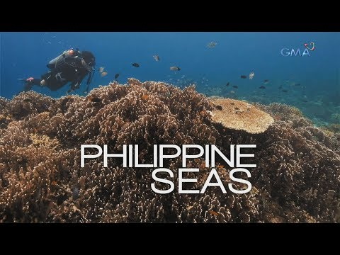 Philippine Seas, a documentary by Atom Araullo (full episode