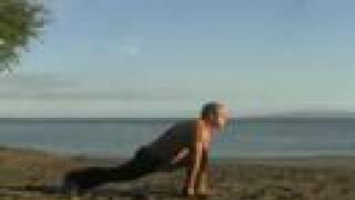 yoga posture - astavakrasana in sun salutation