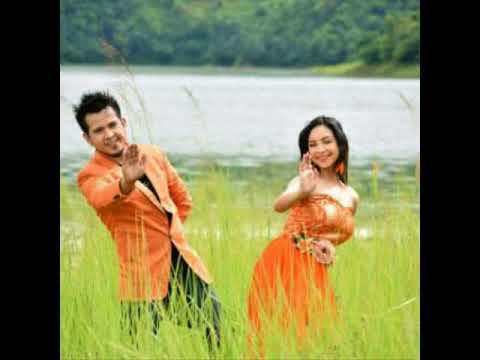 Noie Noie Songs /Vreegu Kashyap And Bornali Kalita/ New Assamese Romantic Songs