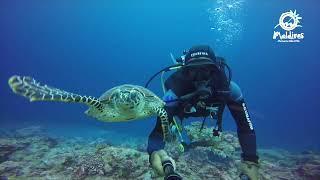Visit Maldives and Leverate Media Campaign Video