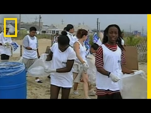Coastal Cleanup | National Geographic