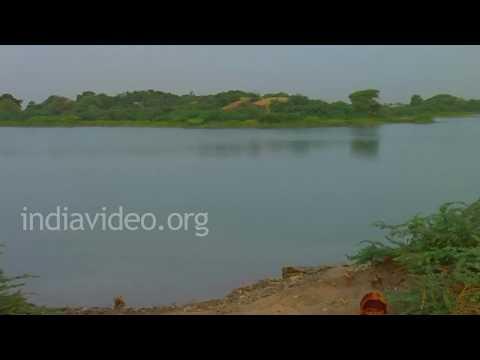 Zainabad Village Life, Gujarat