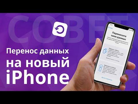 Как перенести все данные на новый IPhone 11 Pro? Резервная копия Iphone в ITunes и Icloud