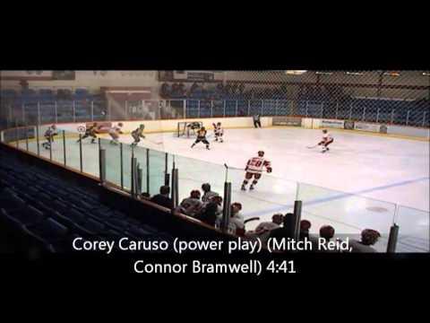 Hamilton Red Wings vs Aurora Panthers Feb 10 8 3 L