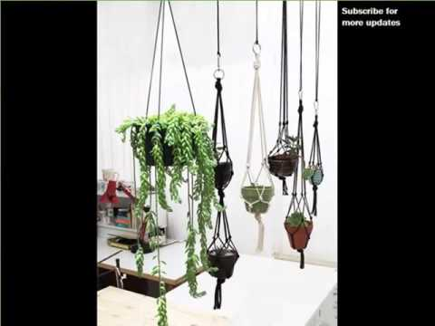 High Quality Indoor Hanging Plants Low Light | Indoor House Or Office Plants Picture  Collection   YouTube Part 21