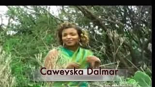 Dhaanto - Nimco Dareen iyo Cali Dhaanto