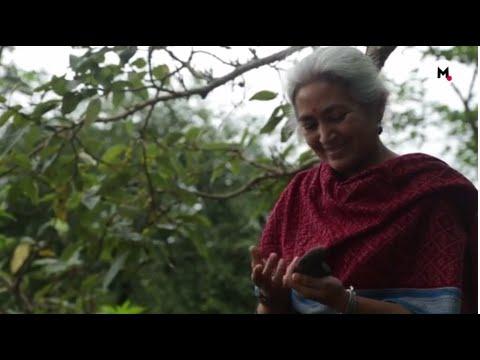 Devrai Art Village: Creativity In Natural...