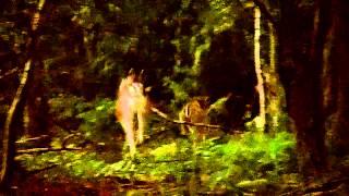Hertjes in het Ketliker skar, Katlijk, Friesland.