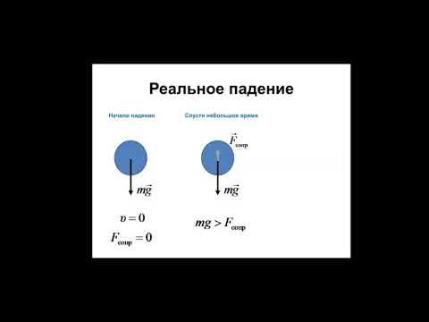 Основы биофизики. Предельная скорость падения