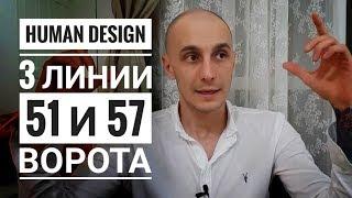 Дизайн Человека 51.3 и 57.3 ворота. Обзор транзитов. Даниил Трофимов. Human Design