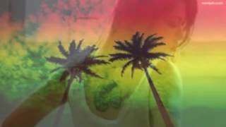 Download Reggae do Piauí